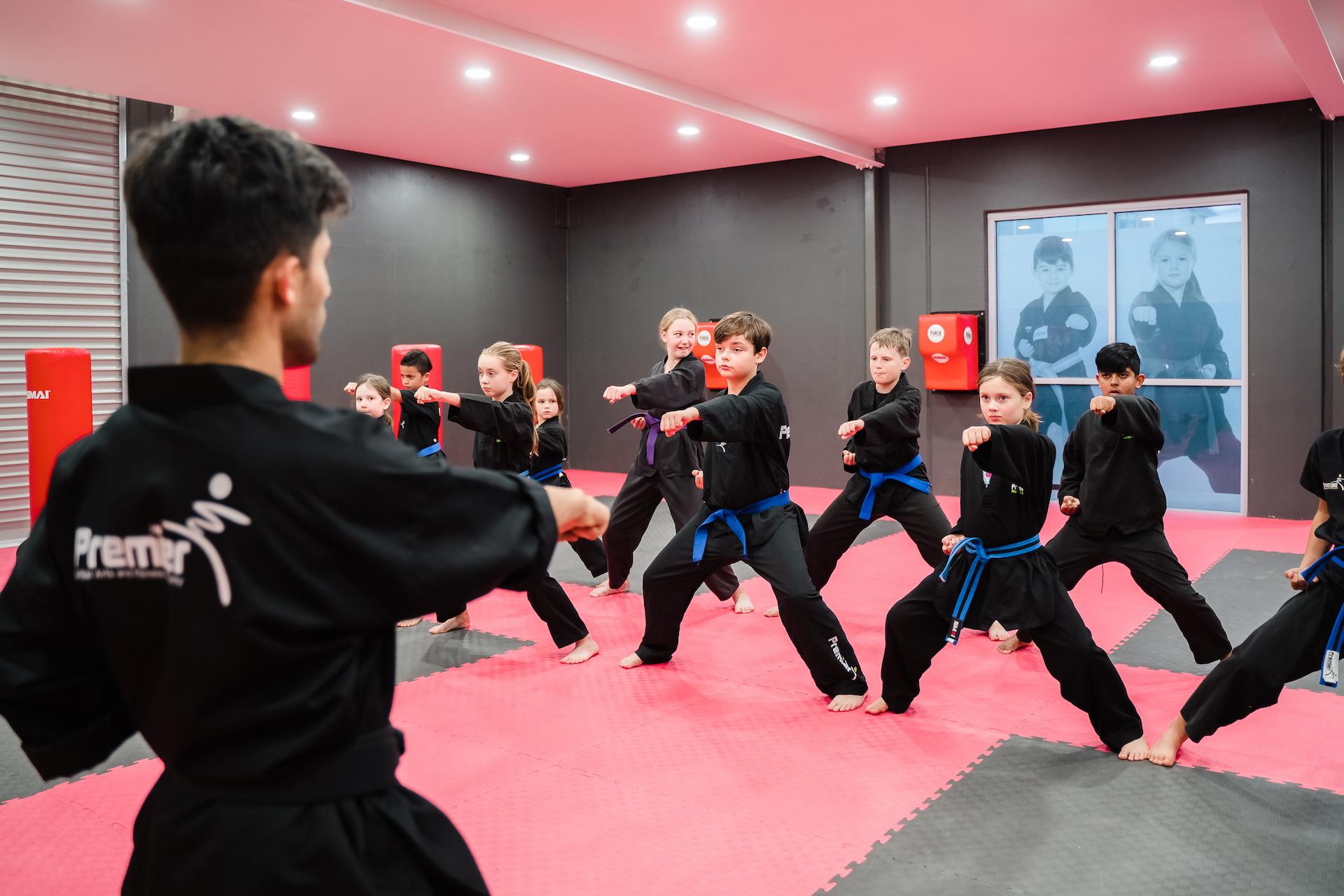 Premier Martial Arts Class